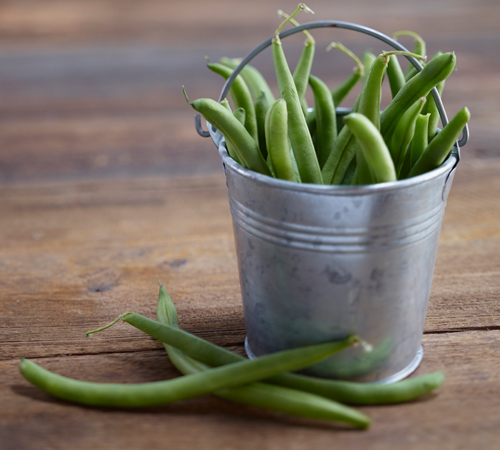 Green Bean Farming